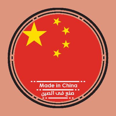 صنع فى الصين