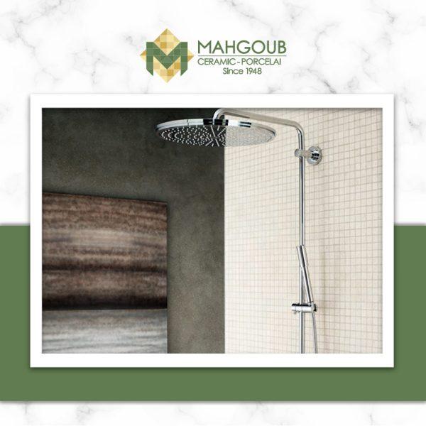 mahgoub-mixers-rainshower-system-