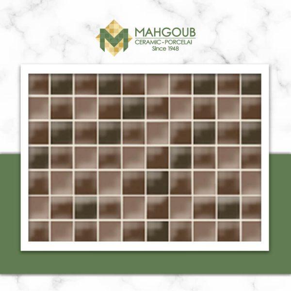 mahgoub-venis-minidual-1