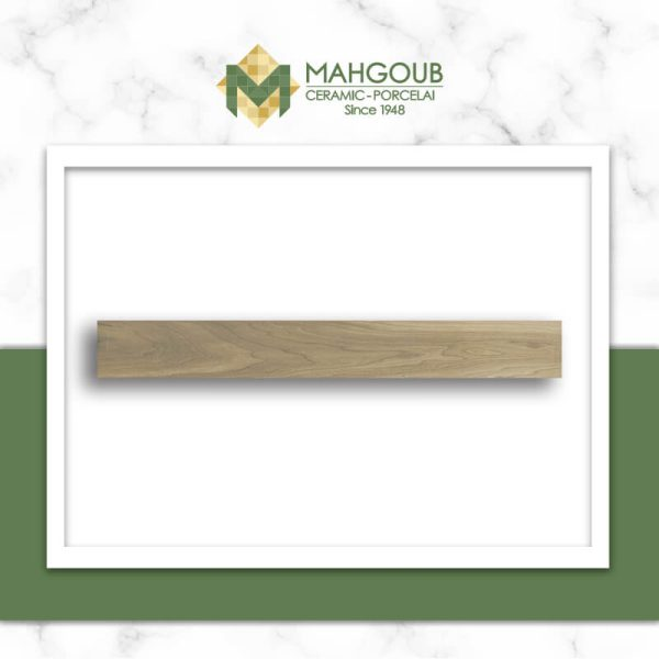 mahgoub-gemma-florida-1