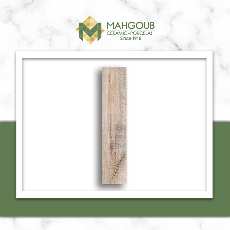 mahgoub-cleopatra-aspen-3