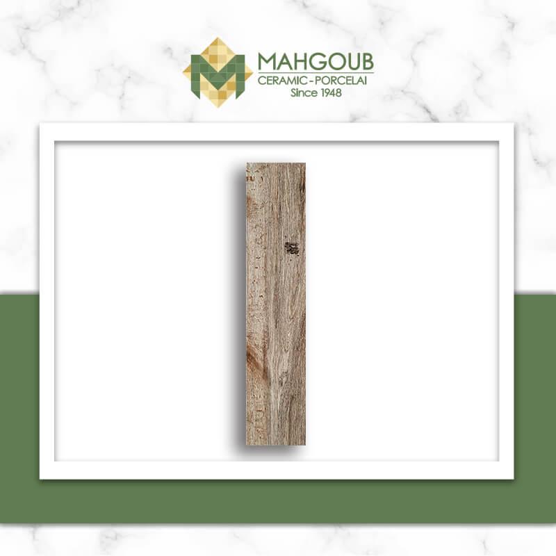 mahgoub-cleopatra-aspen-5
