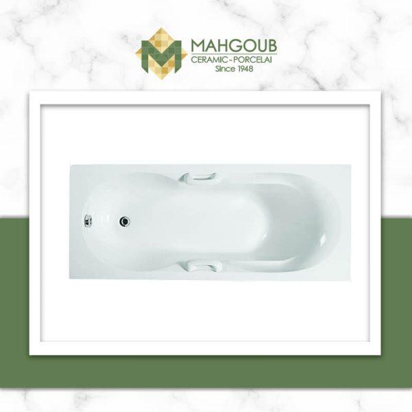 mahgoub-ideal-standrd-tulip-1