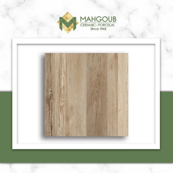 mahgoub-gemma-stanford-1-1