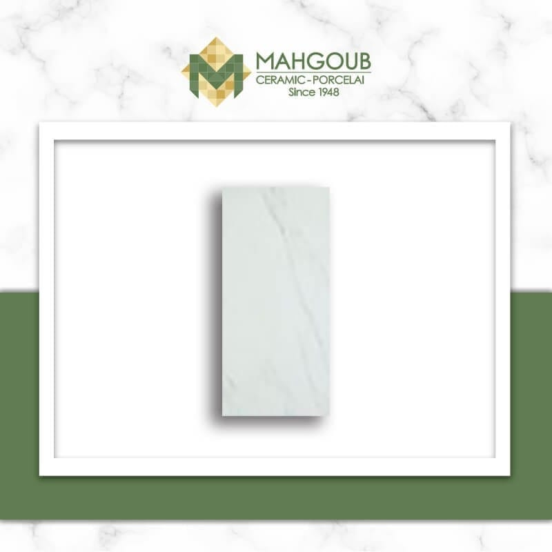 mahgoub-rak-lenis-2