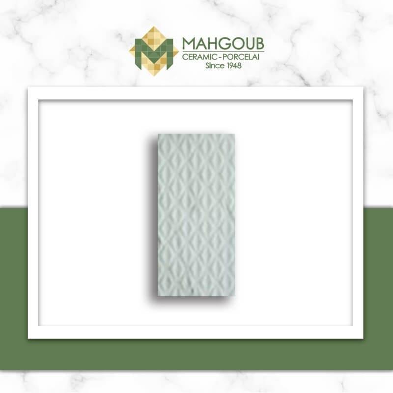 mahgoub-rak-lenis-1-1