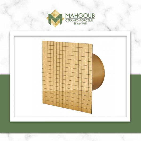 mahgoub-hoods-jsc-mmp-gold-spark