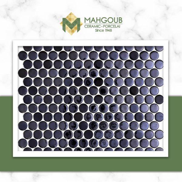 mahgoub-onix-pennyopalo