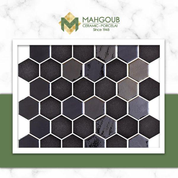 mahgoub-onix-hexagonblends-3