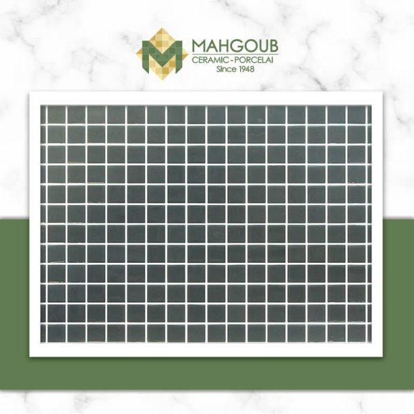mahgoub-onix-lisa-4