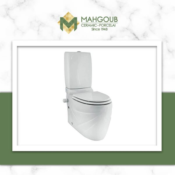 mahgoub-cleopatra-stone-1