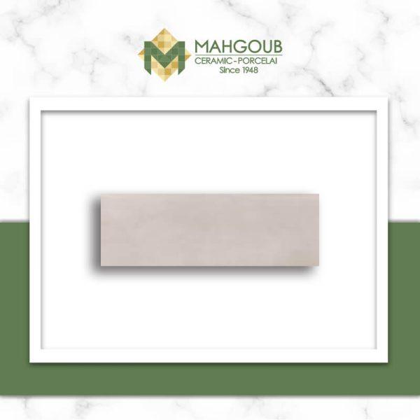 mahgoub-rak-arora-2